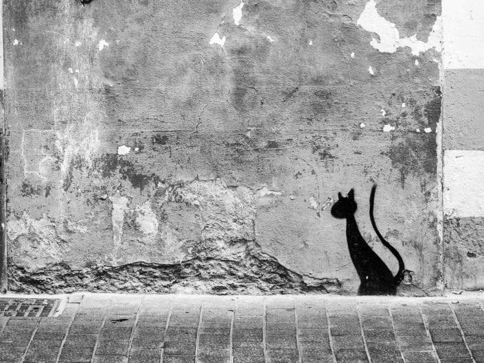 foto reportajes foto periodismo fotografía de calle street photography